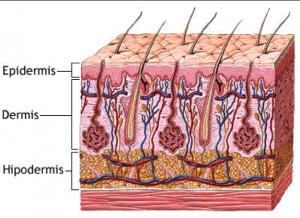 quemaduras-dermatologo-barcelona-dr-lopez-gil